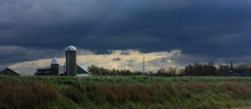 The outlook for rural agriculture