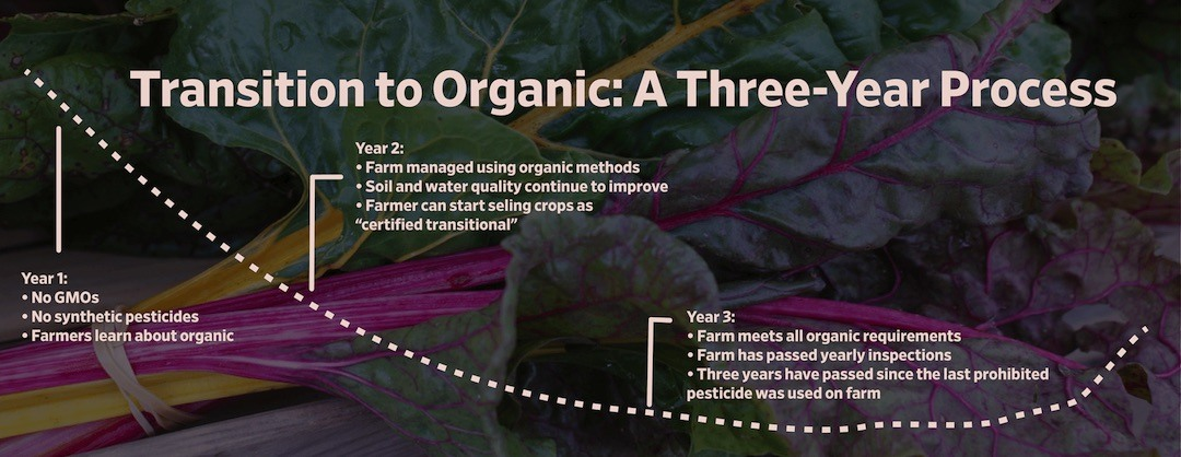 Transitioning farmers to organic: Adapted from Quality Assurance International
