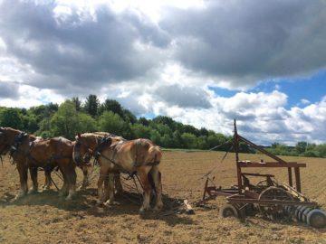 Amish farm in Pennsylvania