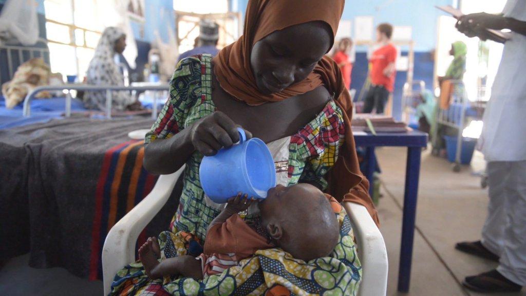 Malnourished twins, Borno, Nigeria, November 2016