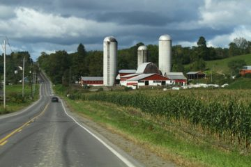 Idaho dairy farm