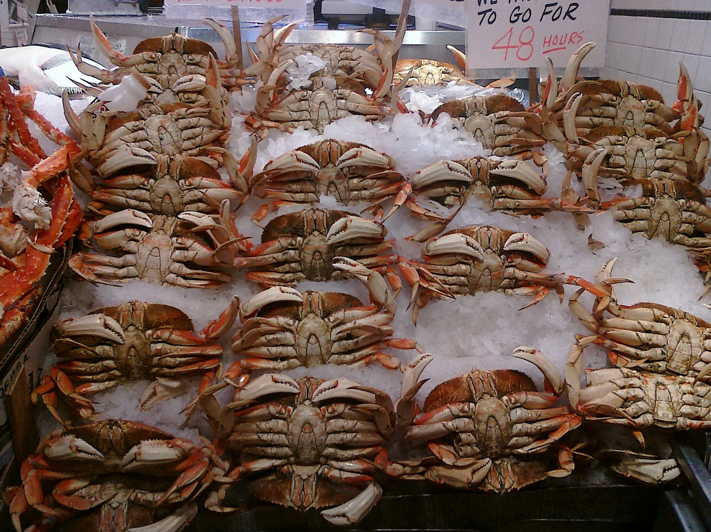 Dungeness crabs at Pike Place Market