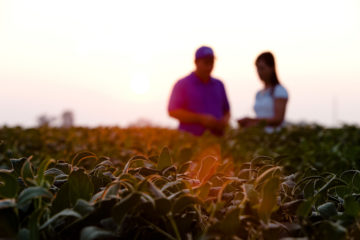 two young farmers in the distance, crops in focus