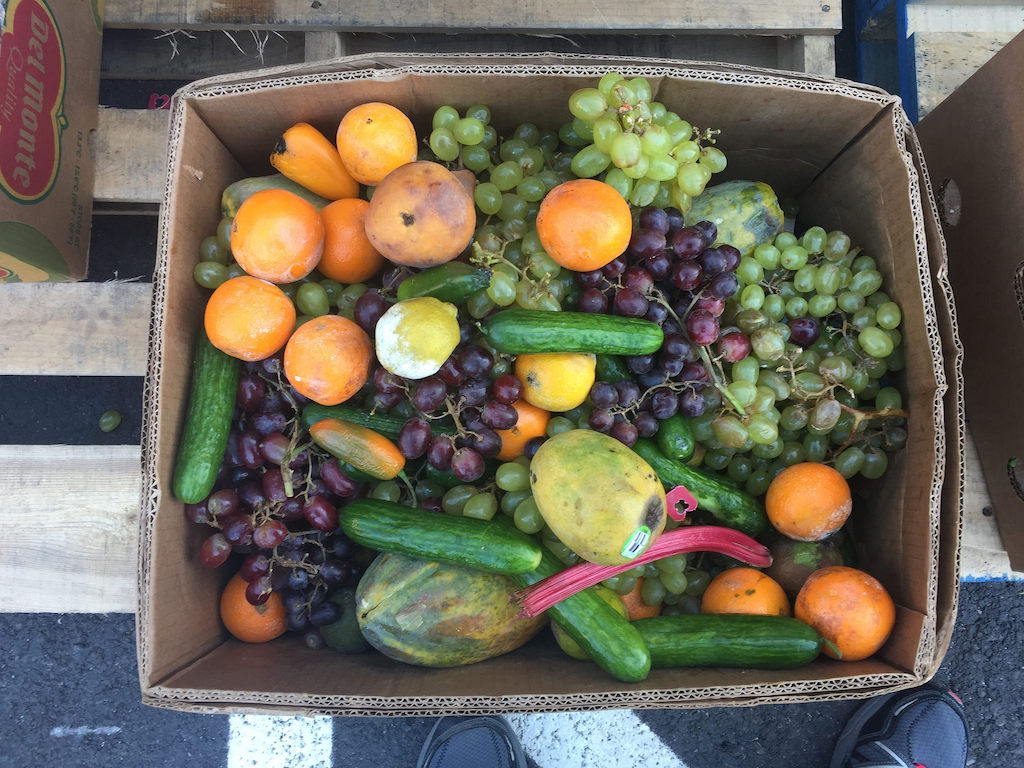 food waste in a box