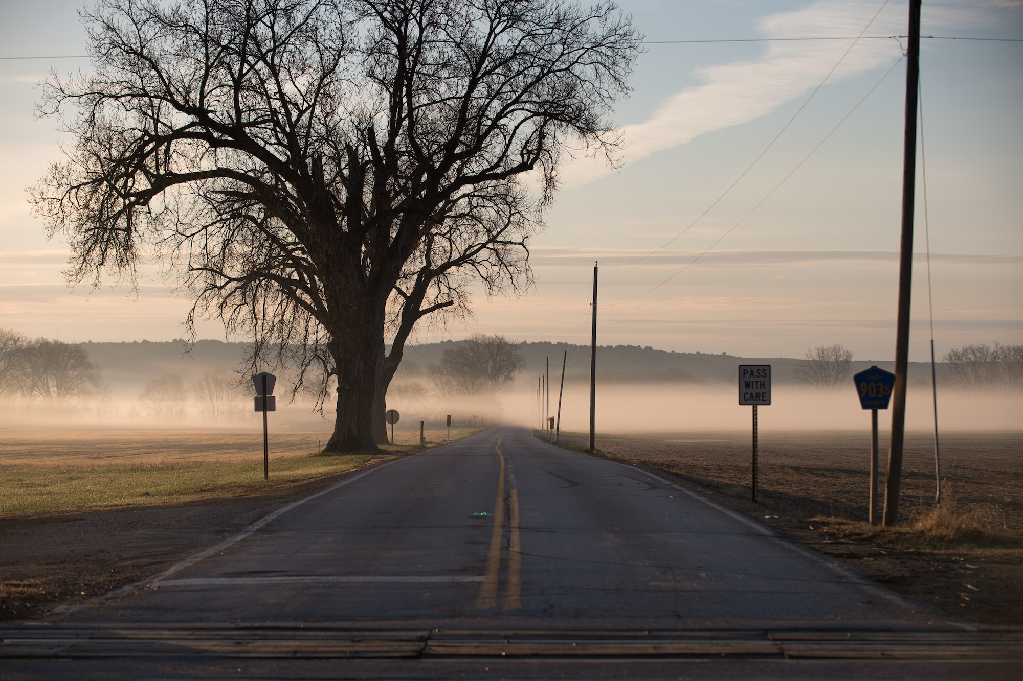Just south of Manhattan, Kansas at sunrise. Early morning fog from the Kansas River covers soybean and corn, dry crop fields farmed by small, local, independent farmers. This area is in a flood zone, with sandy soil in the valley of the Flint Hills, and scattered with trees