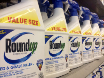 bottles of monsanto's roundup pesticide on a shelf