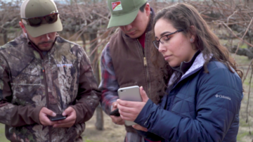 Rivka Garcia shows her phone to two men in a farm