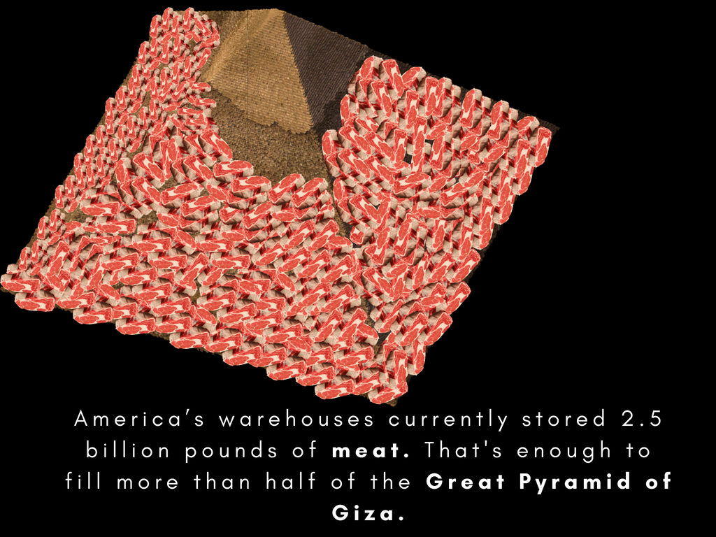 The amount of meat that America has in cold storage could almost fill the Pyramid of Giza. Credit: New Food Economy. July 25, 2018