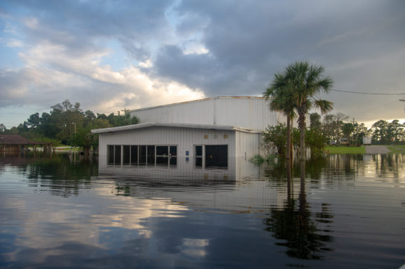 Thinly sliced: Migrant farmworkers got trapped in waist-deep waters during Hurricane Florence