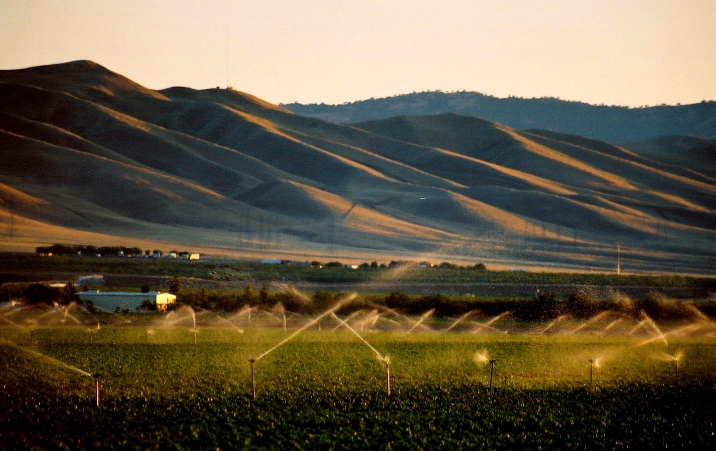 California must abandon 535,000 acres of prized farmland to meet water conservation goals, a new report finds. Credit: Flickr / Michael Patrick, February 2019