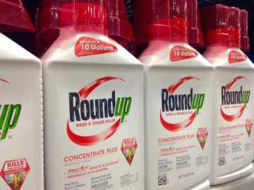 Roundup weedkiller with glyphosate on a shelf
