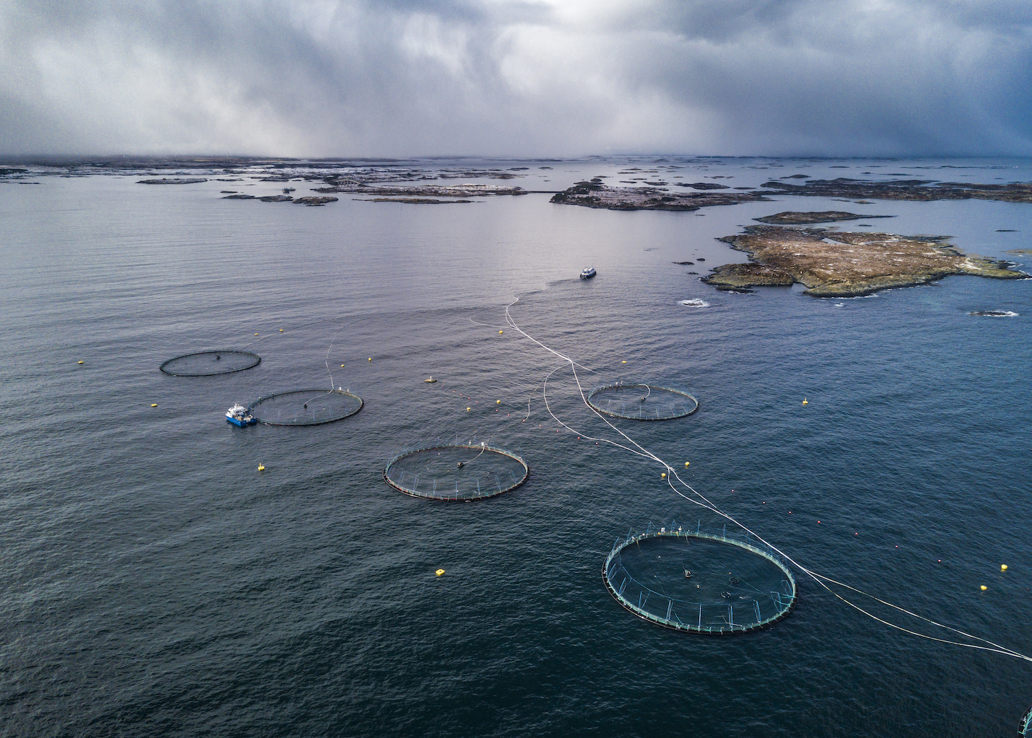 Birds' eye view of a Norwegian aquaculture farm