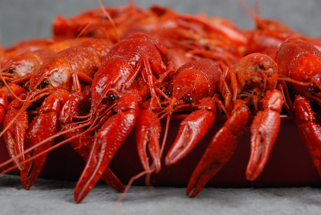 Louisiana bill would require imported shrimp and crawfish to be labeled as such on restaurant menus. Credit: Louisiana Sea Grant College Program / Flickr, May 2019