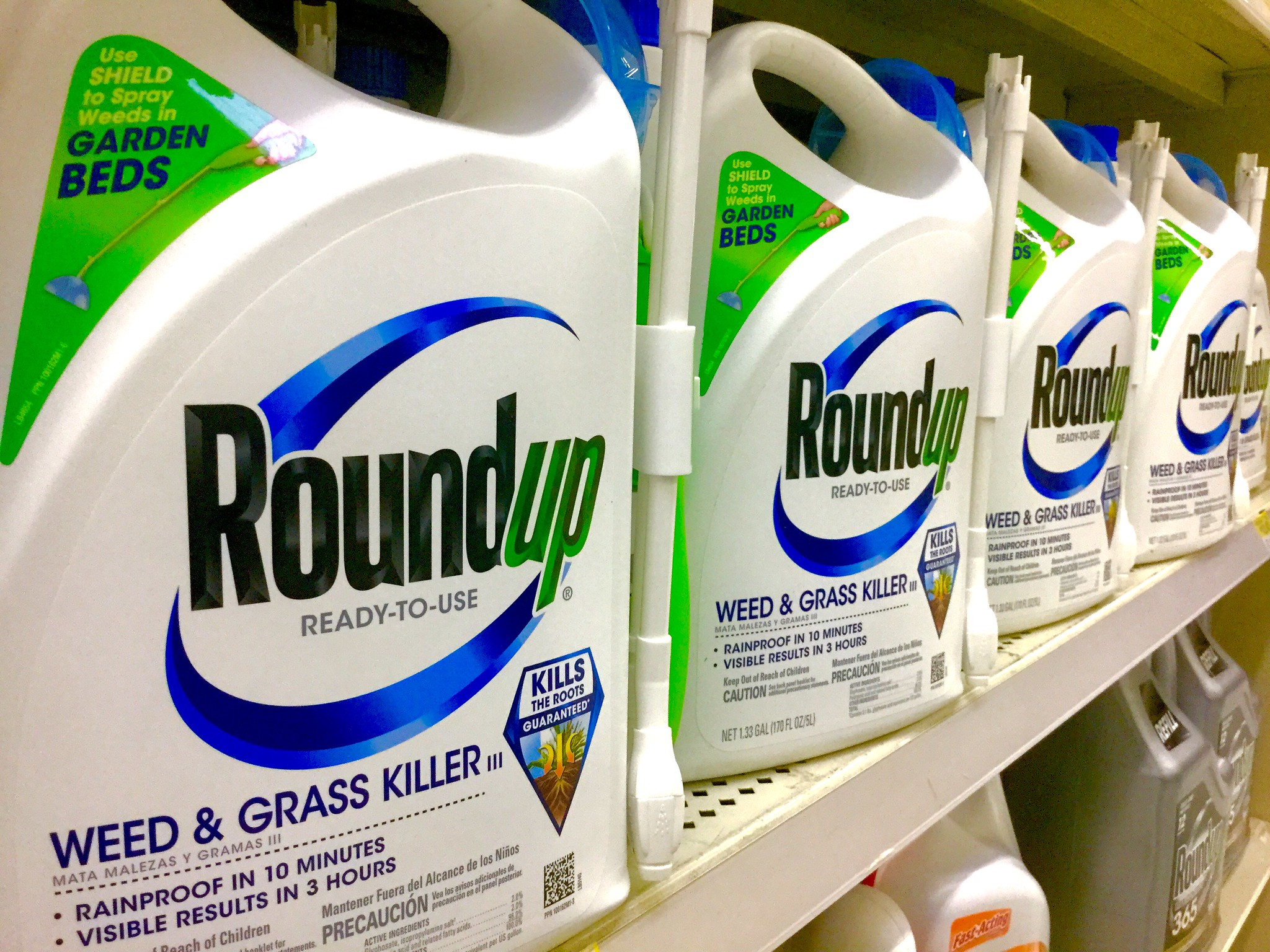 Roundup chemical