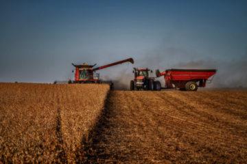 Tractors harvesting soy