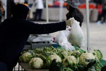 CA farmers market vendor with gloves bagging cauliflower covid-19 March 2020