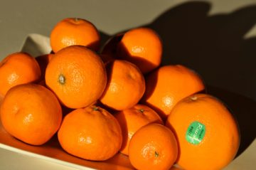 A plate of clementines sit on a table in the sun (April 2020)