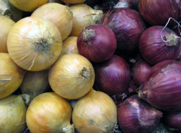yellow and red onions have been recalled for salmonella August 2020