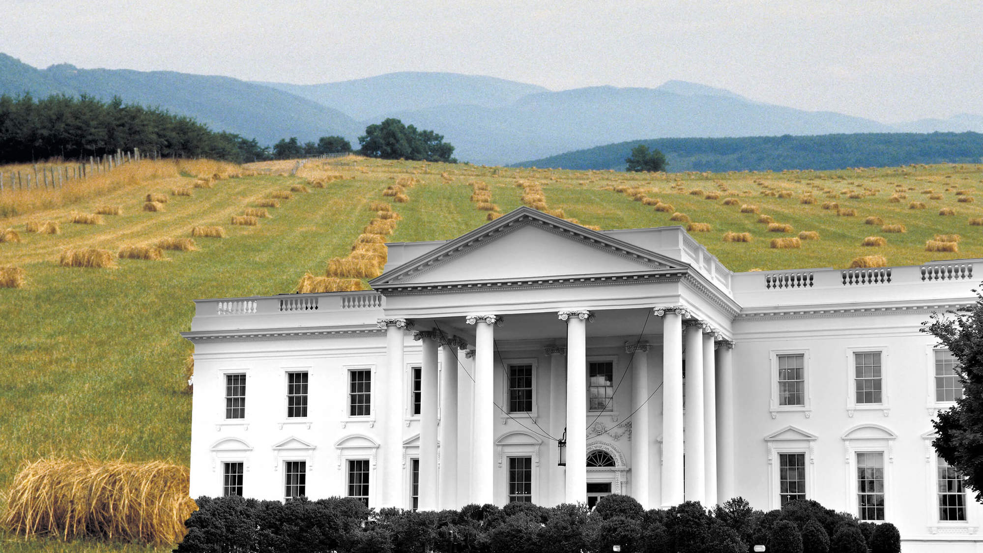 A black and white photo of the White House in front of a hay farm. November 2020