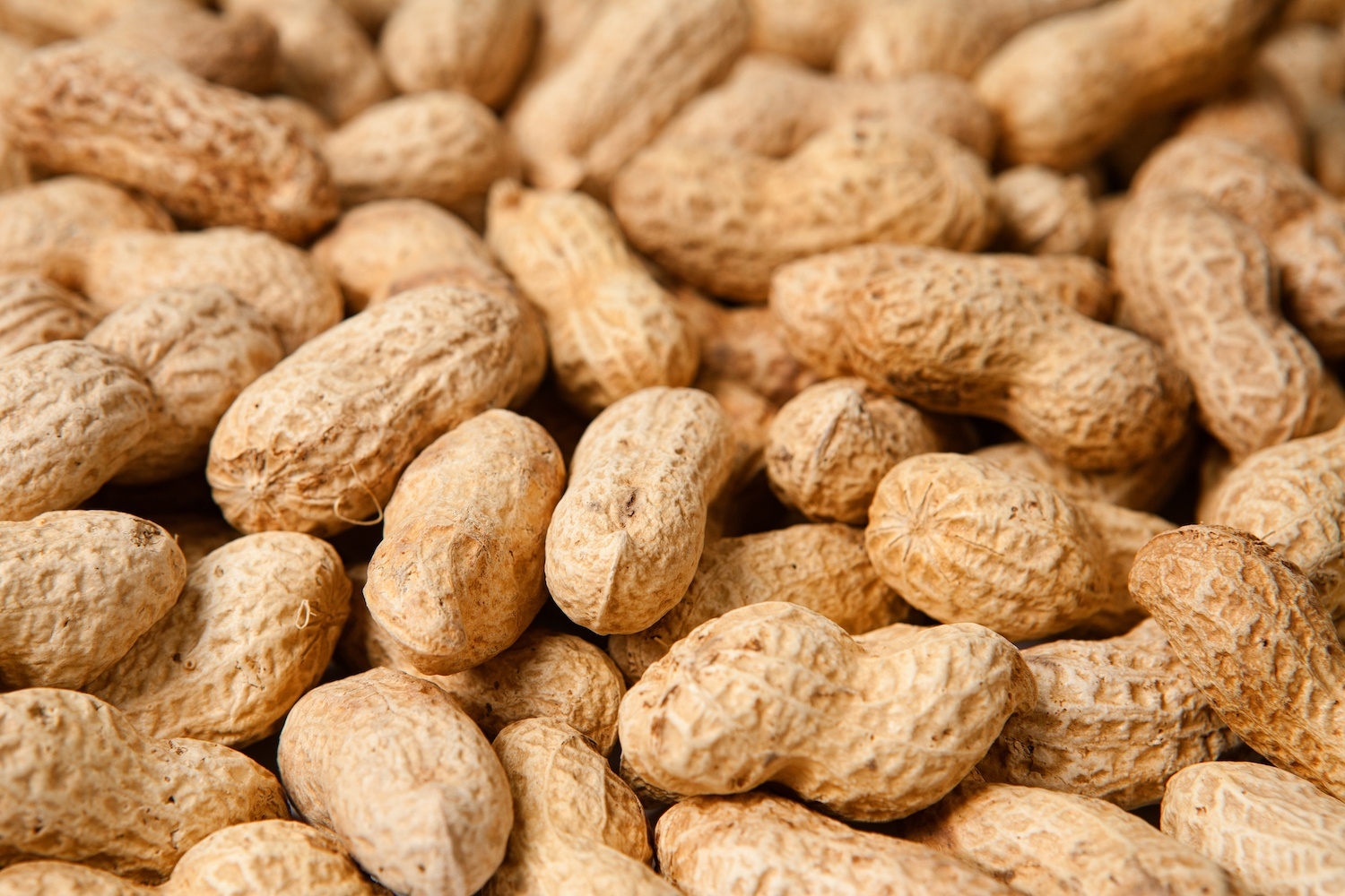 Heaps of peanuts close-up shot. December 2020