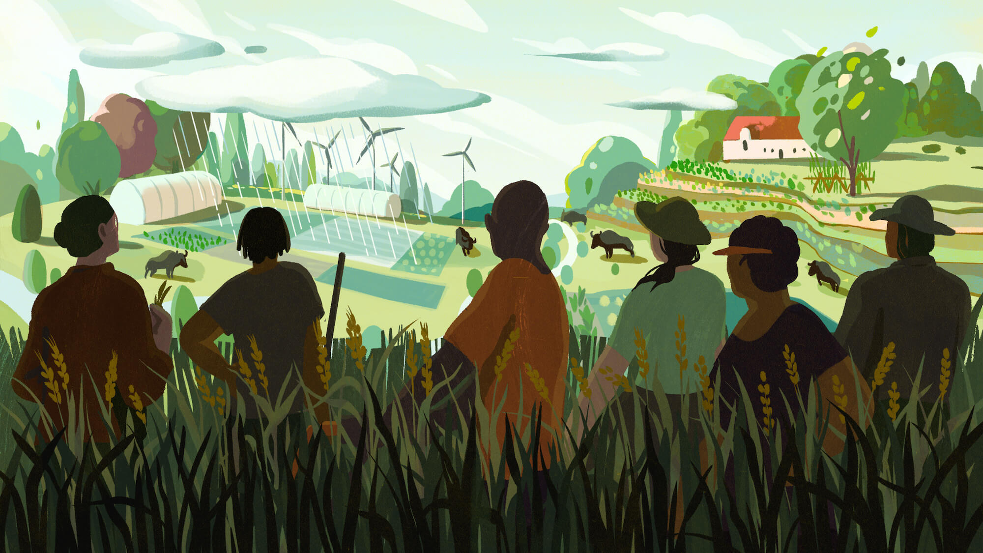 Illustration: Regenerative agriculture needs to reckon with racial justice, land access, equity and other issues before it can fight climate change