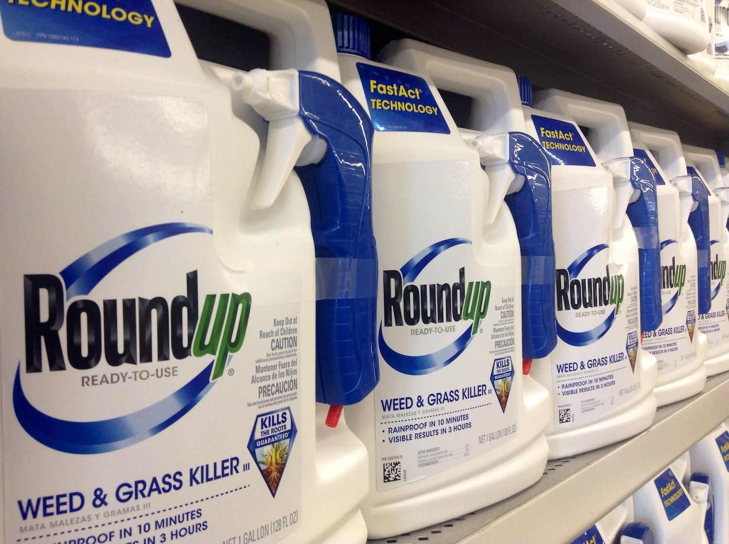 Bottles of Roundup, weed & grass killer, stocked on a shelf in a store for purchase. July 2021
