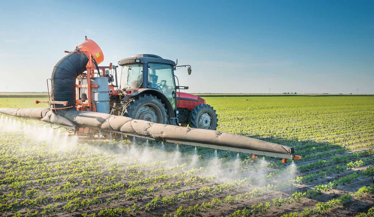 A tractor sprays pesticides over a field of crops. July 2021